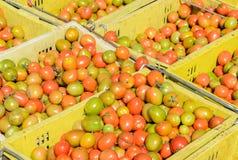 Томаты вишни в пластичных корзинах Стоковые Изображения RF