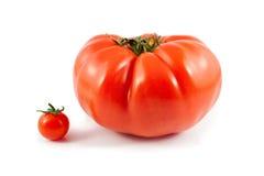 томаты вишни говядины гигантские изолированные органические Стоковое фото RF