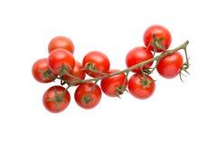 Томаты вишни изолированные на белой предпосылке Стоковое Изображение