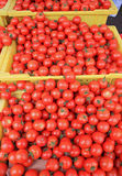 томаты вишни корзин Стоковое Фото