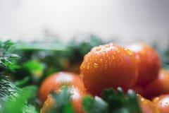 Томаты вишни с петрушкой и укропом Стоковые Изображения RF