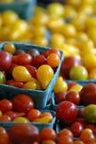 томаты вишни цветастые Стоковое Фото