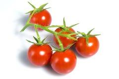 томаты вишни стоковая фотография