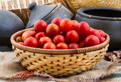 Томаты вишни Стоковое Изображение