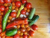 Томаты, вишня, огурцы, чеснок и перцы - vegetable предпосылка Стоковые Фото