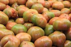 Томаты в продовольственном рынке в Валенсии Стоковая Фотография RF