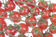 томаты группы вишни стоковое изображение rf