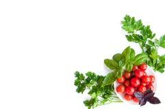 Томаты и зеленые цвета вишни на плите изолированной на белизне Стоковые Фото