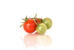 томаты коктеила зеленые красные Стоковая Фотография