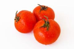 томаты красного цвета 3 Стоковое Изображение RF