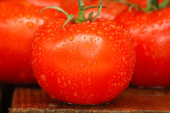 томаты лета Стоковые Изображения
