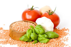 томаты лука чечевиц чеснока базилика Стоковое Изображение
