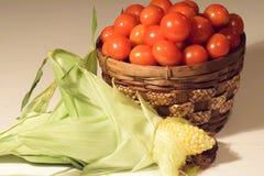 Томаты & мозоль вишни сбора Стоковая Фотография RF