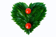 Томаты на предпосылке сердца зеленых листьев Жулик Стоковые Фотографии RF