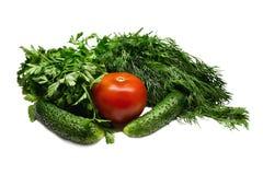томаты, огурцы и зеленые цвета Стоковые Фото