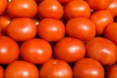 томаты предпосылки Стоковые Изображения