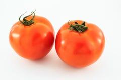 томаты предпосылки белые Стоковая Фотография