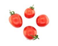 томаты предпосылки свежие изолированные белые Взгляд сверху Стоковая Фотография