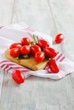 томаты пука зрелые Стоковое Изображение RF