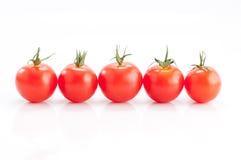 томаты рядка Стоковая Фотография