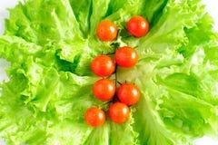 томаты салата вишни Стоковые Фотографии RF