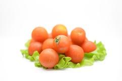 томаты салата листьев вишни Стоковые Изображения RF