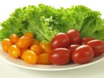 томаты салата плиты стоковые фотографии rf
