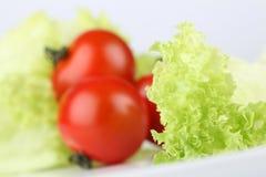 томаты салата Стоковая Фотография RF