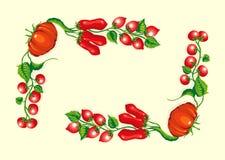 томаты угловойой рамки стилизованные Стоковая Фотография RF
