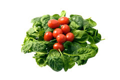 томаты шпината вишни младенца Стоковая Фотография RF