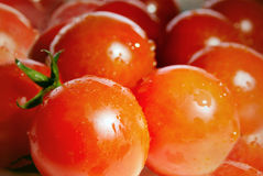 томаты стоковые изображения