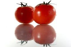 томаты 2 Стоковое фото RF