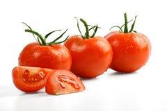 томаты Стоковые Изображения RF