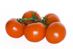 томаты Стоковое Фото