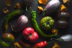 Томаты, aubergines, chili и лисички на серой таблице Стоковые Фотографии RF
