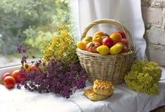 Томаты Heirloom в лозе подперли, органические овощи и травы стоковые изображения rf