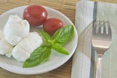 томаты mozzarella Стоковые Фотографии RF
