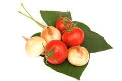 томаты shallots Стоковые Изображения