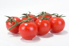 томат вишни свежий Стоковое Изображение RF