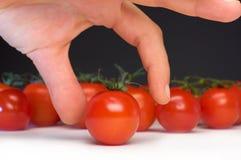 томат задвижки Стоковая Фотография