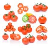 томат комплекта изображений Стоковое Фото