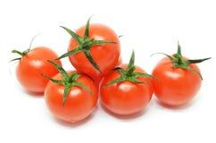 томат красного цвета вишни Стоковая Фотография RF