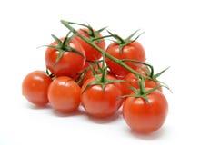 томат красного цвета вишни Стоковое Изображение RF