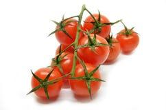 томат красного цвета вишни Стоковое Изображение