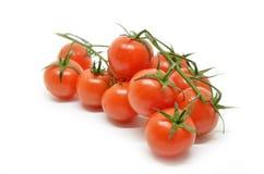 томат красного цвета вишни Стоковые Изображения