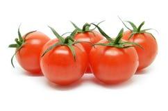 томат красного цвета вишни Стоковые Фотографии RF