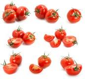томат образца Стоковые Фотографии RF