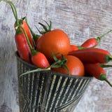томат перца chili Стоковое Изображение