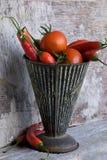 томат перца chili Стоковое Фото