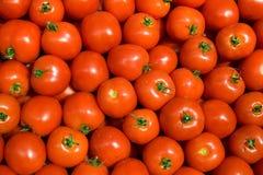 томат предпосылки Стоковая Фотография